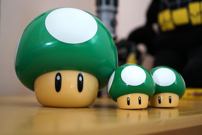 1 Up Mushroom Family