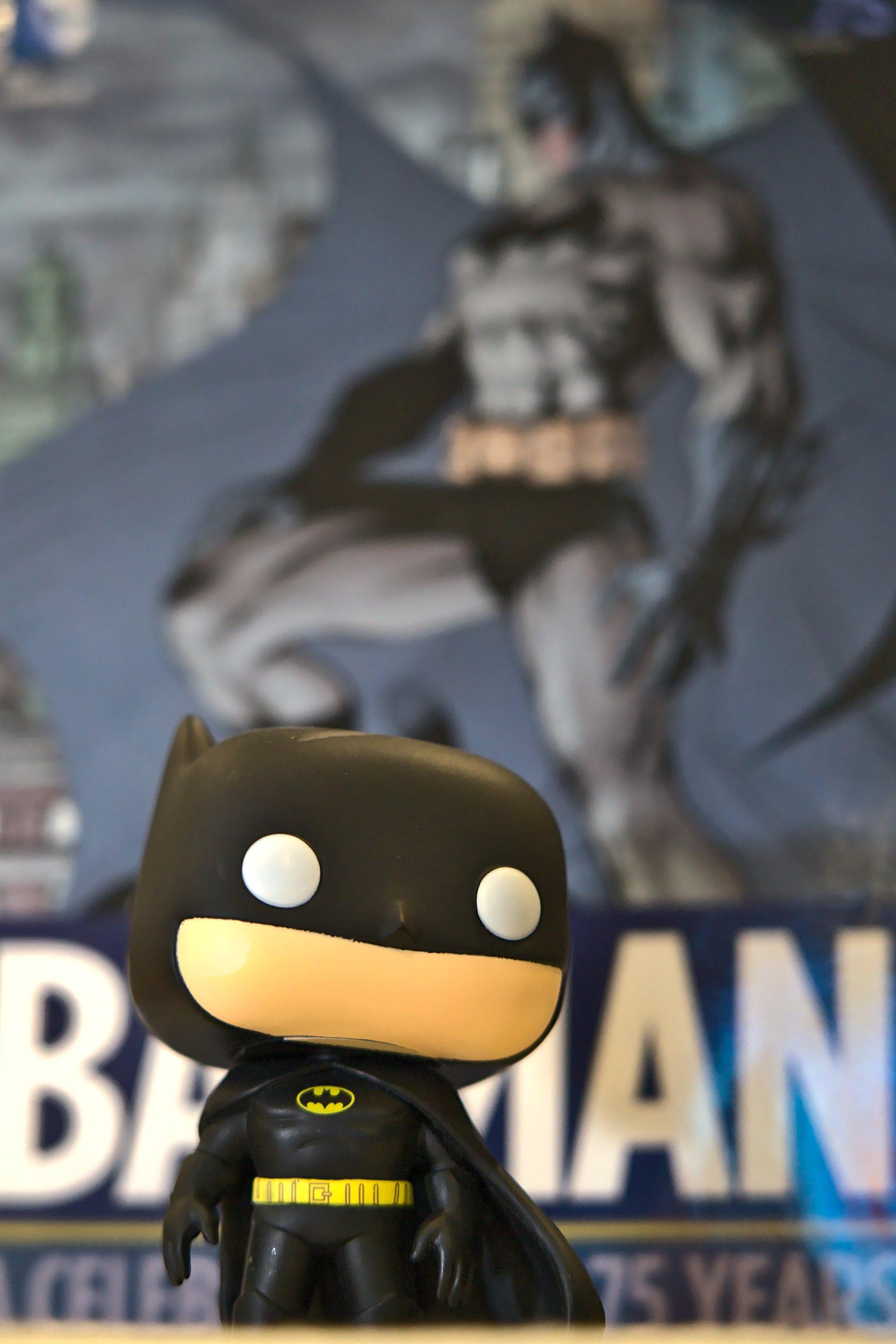 Batman and Batman