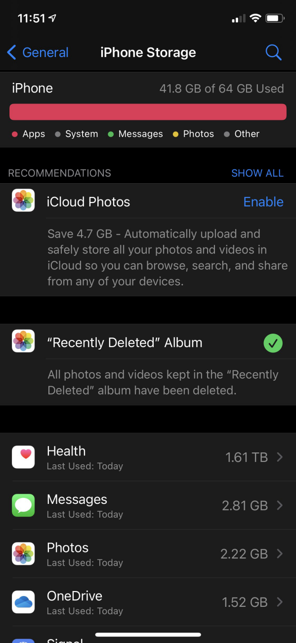 Apple Health Storage Usage